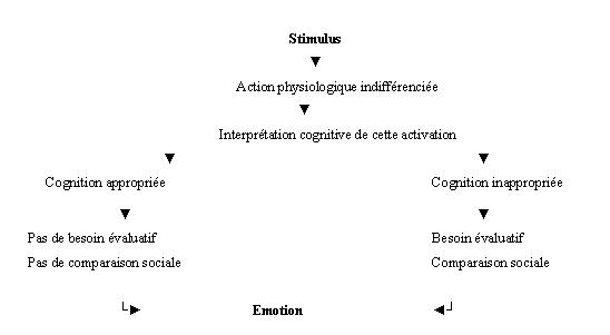 Définitions Conceptuelles Des émotions